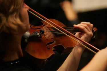 Geige Illu - Verein Musikfrende Kiel Webseite