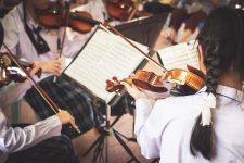 Stock klein 1 - Verein Musikfrende Kiel Webseite