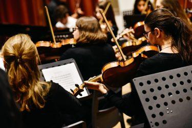 Kieler Streichquartett © Marina Hewig - Verein Musikfrende Kiel Webseite